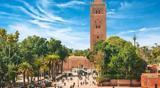 Marrakech_545x300